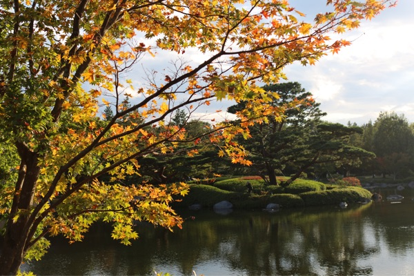 立川・国営昭和記念公園