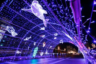 多摩センター イルミネーション 2016(Tamacenter Illumination)