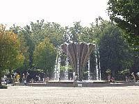[バーベキュー]赤塚公園