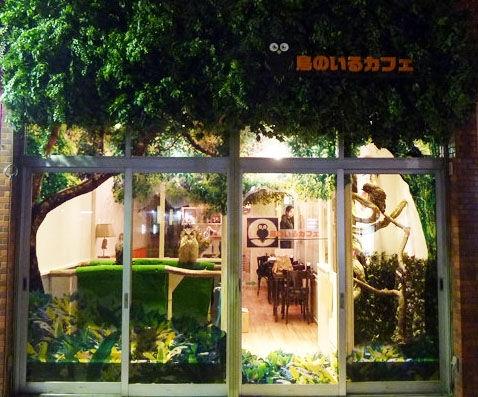 鳥のいるカフェ/木場駅/カフェのイメージ