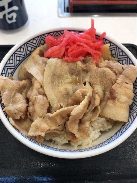 吉野家  新百合ヶ丘津久井道店  豚丼(^ ^)