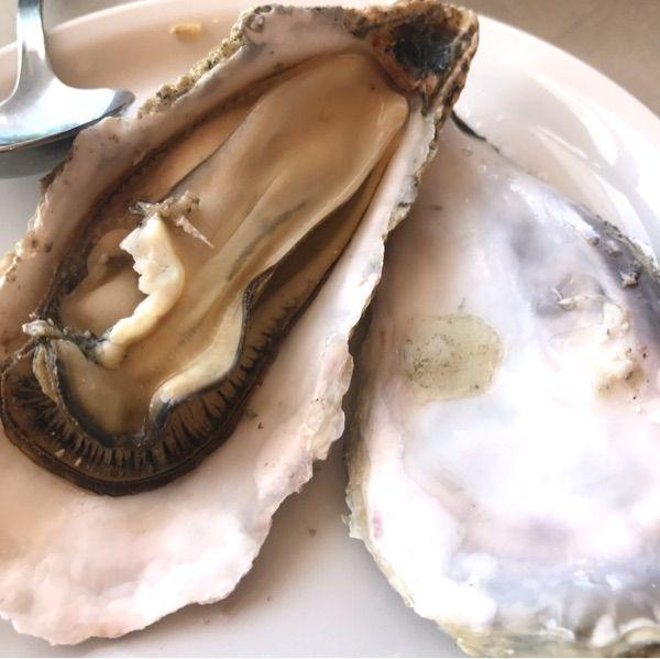 ハカタステーション オイスターバー ワイン蒸し牡蠣。味がぎゅっとしてエキスが美味しい❤️