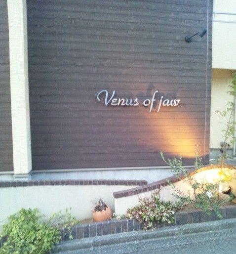 ヴィーナスオブジョー(Venus of jaw)