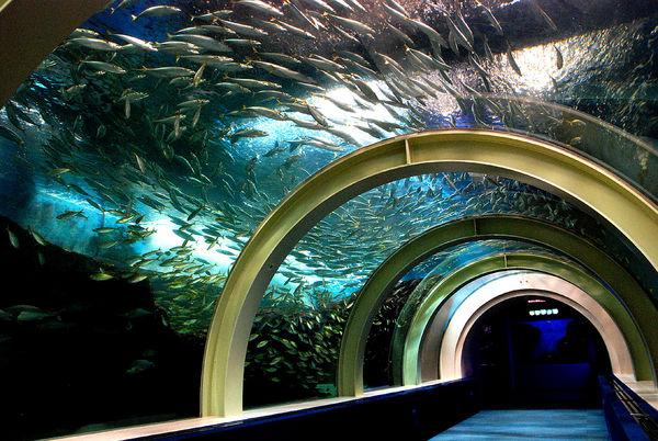青森県営浅虫水族館