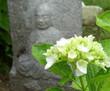 雨の観音寺