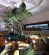 旭川市博物館 ペニウンクルのくらし イオマンテ カムイ 旭川の自然 動物 18
