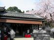 醐山料理 雨月茶屋 三宝院 売店 で 胡麻どうふ、ゆば豆腐