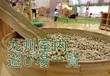 【九州】室内遊び場~雨の日でも遊べる遊具施設一覧