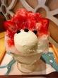 今日でラスト!ジャパニーズアイス櫻花のかき氷「くまさん達のかき氷」