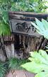 信州に来たような素敵な庭園を眺めながら…懐石と手打ちそば あずみ野(流山市野々下)