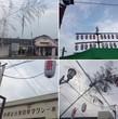 黒田原夏祭り