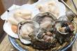 【川崎】新鮮肉厚な貝類を豪快な浜焼きで堪能!コスパ・質共に安心感ある大衆居酒屋「浜焼太郎 川崎仲見世通り店」