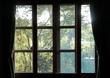 穏やかな日差しの中の目覚め in 長野県諏訪群原村