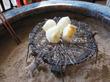 【福岡】おばあちゃんの火鉢サロンでチャンポン&皿うどん♪@カフェ くうねる