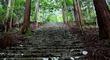 京都の山岳寺院巡りしました♪「神護寺」→「高山寺」→「西明寺」【後編】