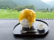 完熟梅かき氷/お茶のおもてや園 そば処 茶禅一(東栄町)
