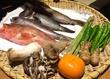 【大門浜松町】産直の鮮魚や野菜を自分好みに調理♡ 淡路島食材は特にオススメ!!