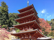 サクッと週末旅!歴史と自然と食の奈良へ。〜前半