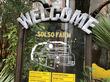 まるでジブリの世界!自然体験農園あふれるソルソファーム(SOLSOFARM)の攻略方法 [店内の様子・車アクセス/駐車場情報まとめ]