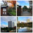 紅葉の浜離宮〜芝公園〜東京タワーでビール@浜松町、大門