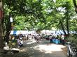 7月で一番人気のお祭り「グルメフェスタin仲町台 仲町台夏まつり」が今年も開催!開催日時と見どころは?