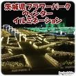 穴場デートスポット:茨城県フラワーパークのウィンターイルミネーション(1/31まで)