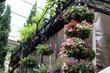 【表参道ランチ】花と緑に囲まれた一軒家レストランインスタ映えスポット