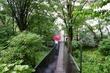 箱根湿生花園