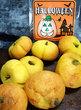 かぼちゃの店