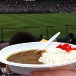 阪神甲子園球場 モツ入りカレーです( ´ ▽ ` )やっぱ甲子園のカレーは最高♩