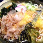 てんてん アピタ安城南店天麺うどん( •ॢ◡-ॢ)-♡