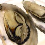 蒸し牡蠣 GUMBO & OYSTER BAR 星空スタンド