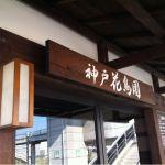 神戸花鳥園開園まち