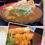Ah-麺 竹天鶏カレーうどんトロトロのカレー出汁がこれでもか位いっぱいの上にTKU名物、箸で持ち上げるのが困難な位の大きな鶏天!!うどんもモチっとウマ♪5時まで小ライス付き