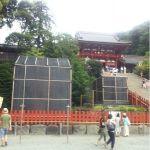 鶴岡八幡宮に来ました。トンビがぴーひょろろ
