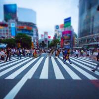 渋谷グルメ