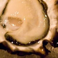 牡蠣食べ放題があるお店・かき小屋2018