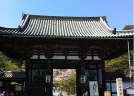 関西梅まつり・梅の名所2018【大阪・京都・兵庫・滋賀・奈良・和歌山】