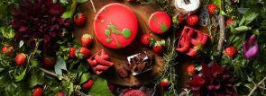【ハイアットリージェンシー 大阪 】小さな苺の森をイメージしたストロベリースイーツブッフェ1/5から