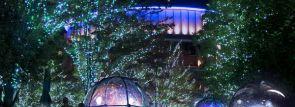 東京ドームで宇宙空間をイメージしたイルミネーション開催!NAKED Inc.がプロデュース