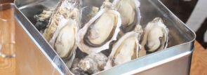 築地牡蠣センター「カキ小屋」札幌場外市場に上陸!特大ホタテなど地元食材や希少な貝類も堪能