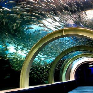 北海道・東北の水族館