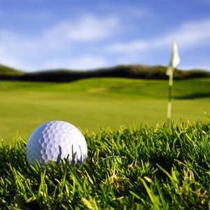 楽しいゴルフ 2