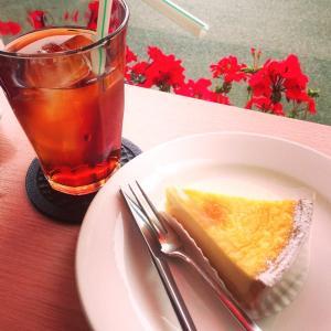 [東京]絶品チーズタルト・チーズケーキTOP5