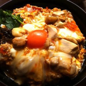 東京で親子丼が美味しいお店~極上の黄身のせ親子丼
