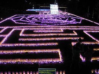 広島市植物公園 イルミネーション 2017(花と光のページェント ~クリスマス夜間開園~)