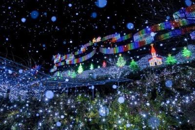 あしかがフラワーパーク イルミネーション『光の花の庭~フラワーファンタジー2017~』