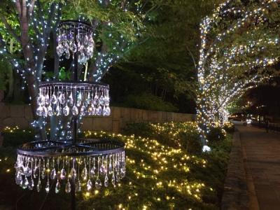 リーガロイヤルホテル クリスマスイルミネーション(ROYAL CHRISTMAS 物語が動き出す この瞬間)