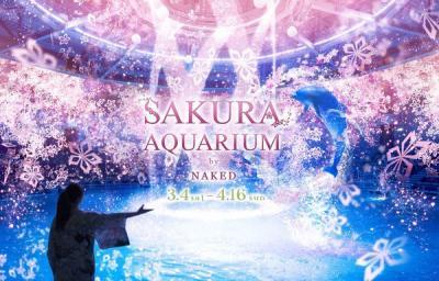 エプソン アクアパーク品川「SAKURA AQUARIUM by NAKED」