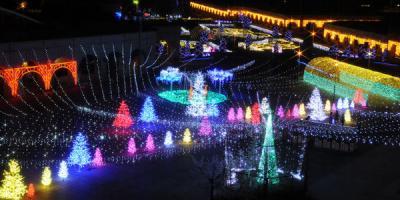 神戸イルミナージュ2017-2018(道の駅 フルーツ・フラワーパーク 大沢 イルミネーション)